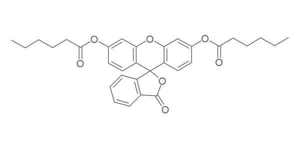 GA01095-03032016 - Fluorescein dicaproate
